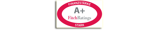 FitchRatings - Stark